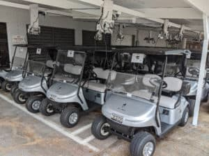 Golf Cart Fleet